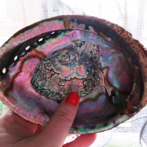 Nature is amazing. I use this abalone shell when smudging my home.